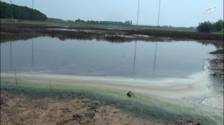 """Hồ Suối Hai bị """"bức tử"""" vì nước thải ô nhiễm"""