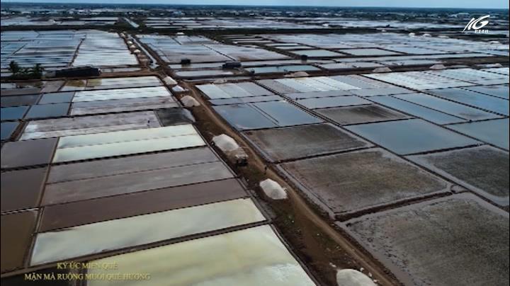 Mặn mà ruộng muối quê hương