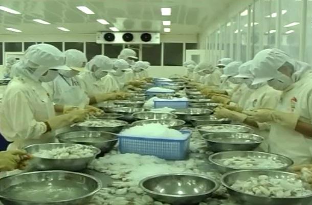 Kiên Giang quy hoạch nuôi trồng thủy sản