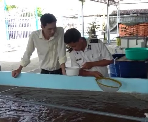 Tăng cường kiểm tra chất lượng tôm giống