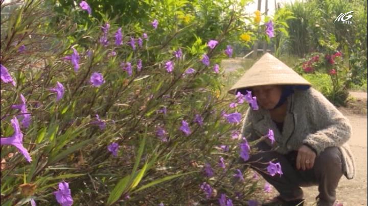 Biến bãi rác thành vườn hoa