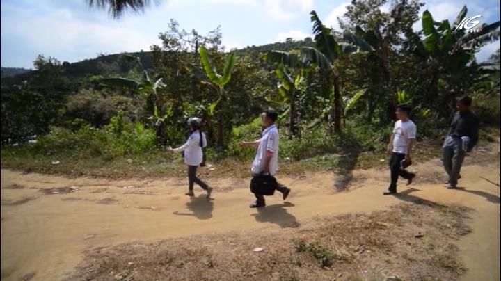 Băng rừng tiêm chủng