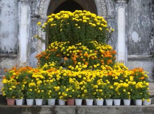 Phú Yên thu hút khách du lịch