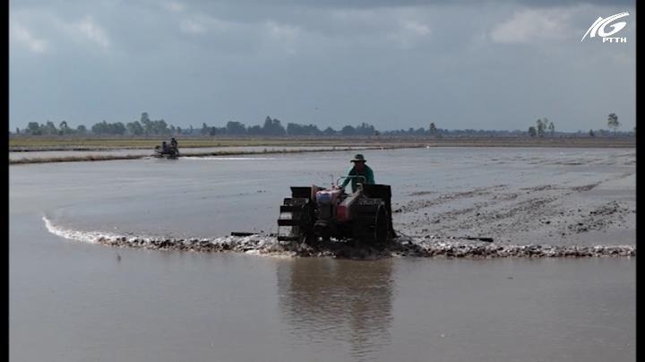 Hòn Đất: Chủ động sản xuất vụ lúa Hè thu