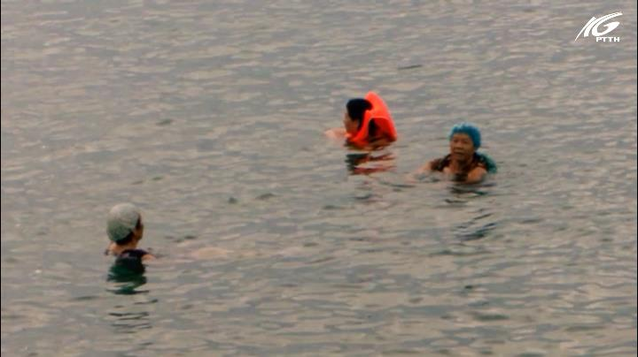 Tắm biển, coi chừng sứa lửa tấn công