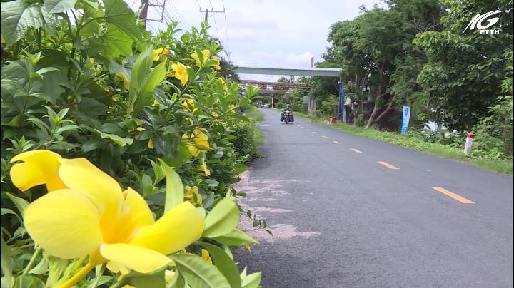 Nông thôn mới (08/07/2019)