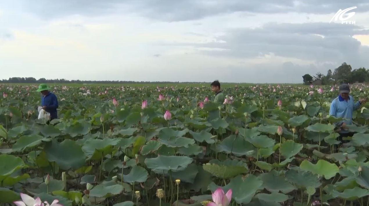 Sức sống mới huyện biên giới Giang Thành