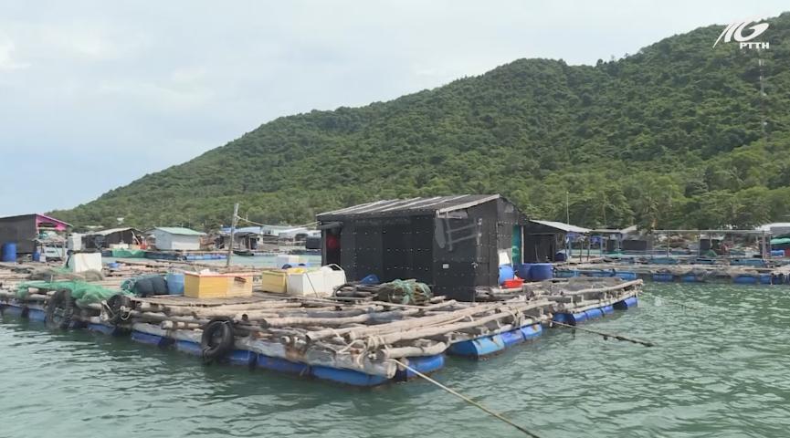 Xã Hòn Nghệ phát triển mạnh nghề nuôi cá lồng bè