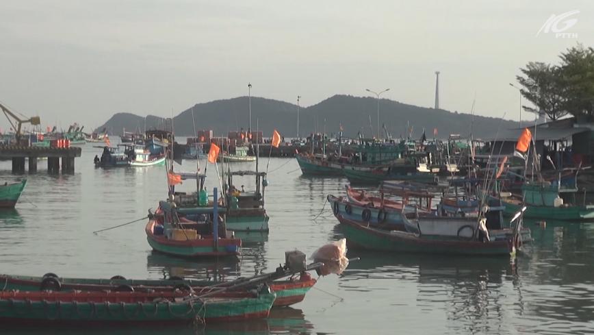 Ngư trường cạn kiệt, tàu cá nằm bờ la liệt