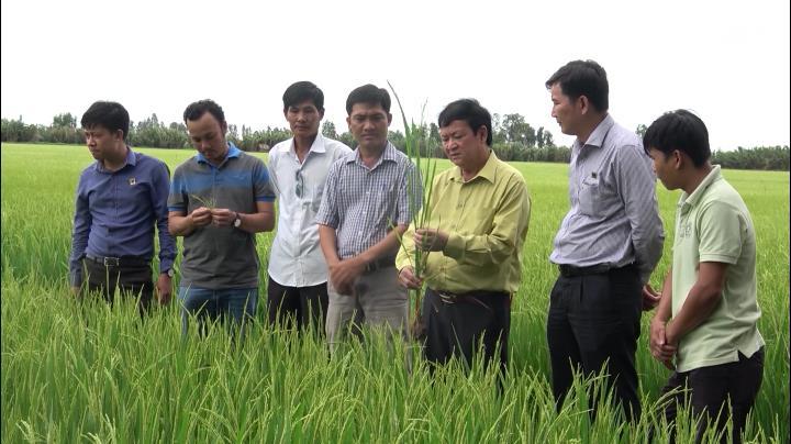 Tạp chí Nông nghiệp nông thôn (07/02/2020)