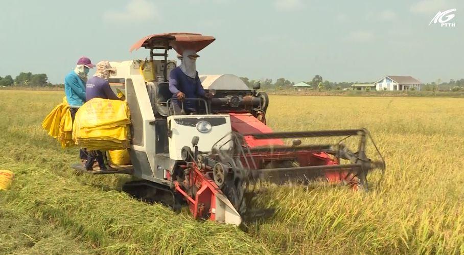 Thúc đẩy phát triển lĩnh vực nông, lâm nghiệp, thủy sản