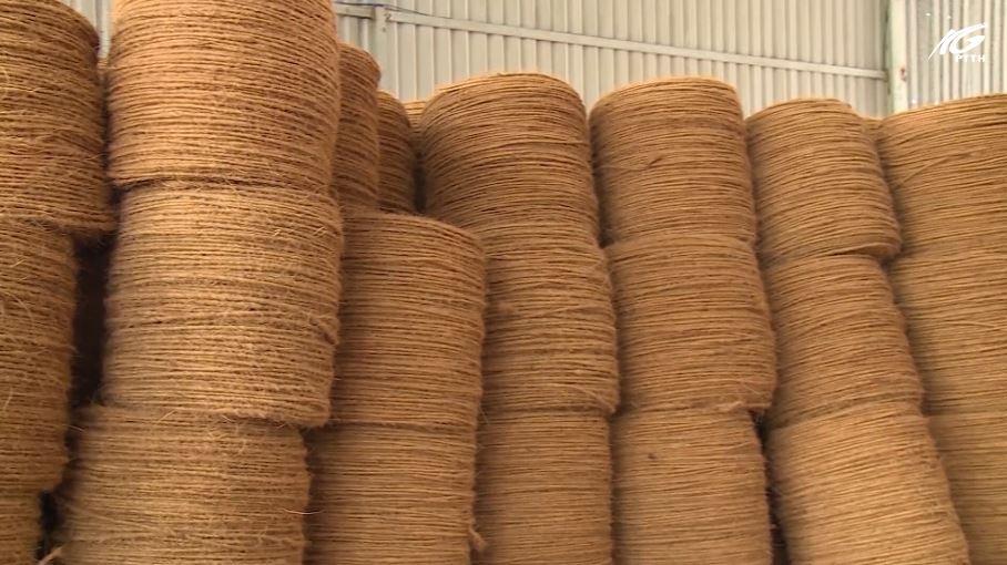 Cơ hội của sợi chỉ dừa khi EVFTA thông qua