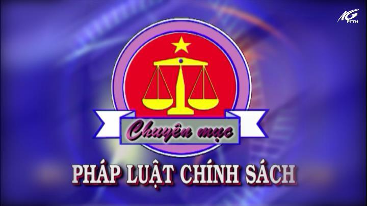 Pháp luật và chính sách (13/8/2020)